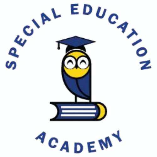 The Academy by Special Education Academy